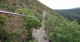 Baumschebebahn im Harz