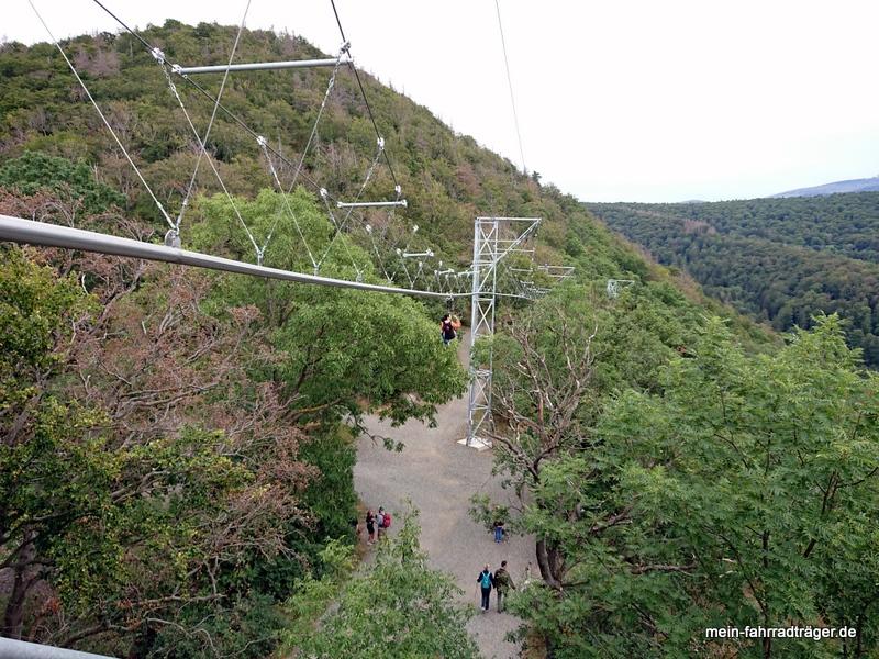 Blick von der Gipfelstation der Baumschwebebahn.