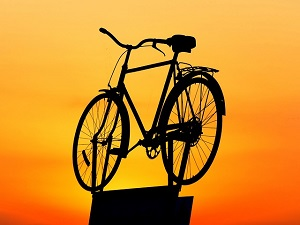 Fahrrad sicher transportieren Fahrradträger